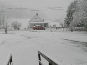 snow 018
