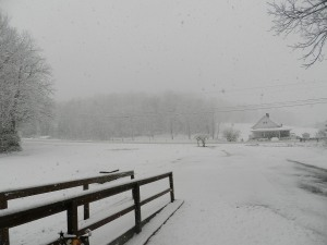 snow 023