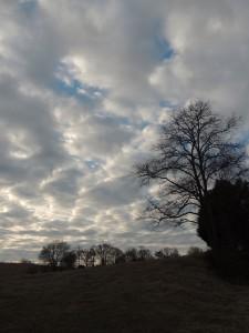 amazing sky.
